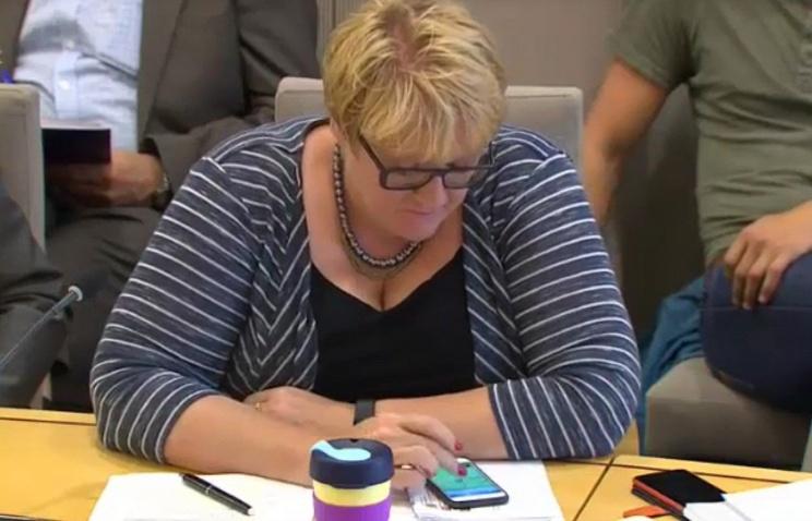 В Норвегии лидер партии играла в PokemonGo во время заседания комитета по вопросам обороны