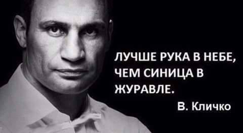 Кличкоцитатник: 12 искрометных фраз киевского мэра