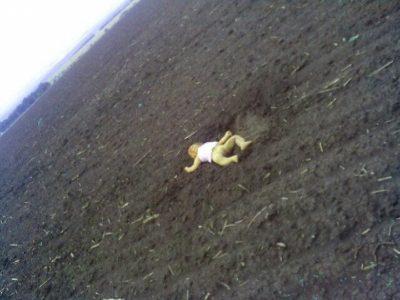 хлоп на полі