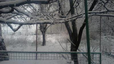 зима тит