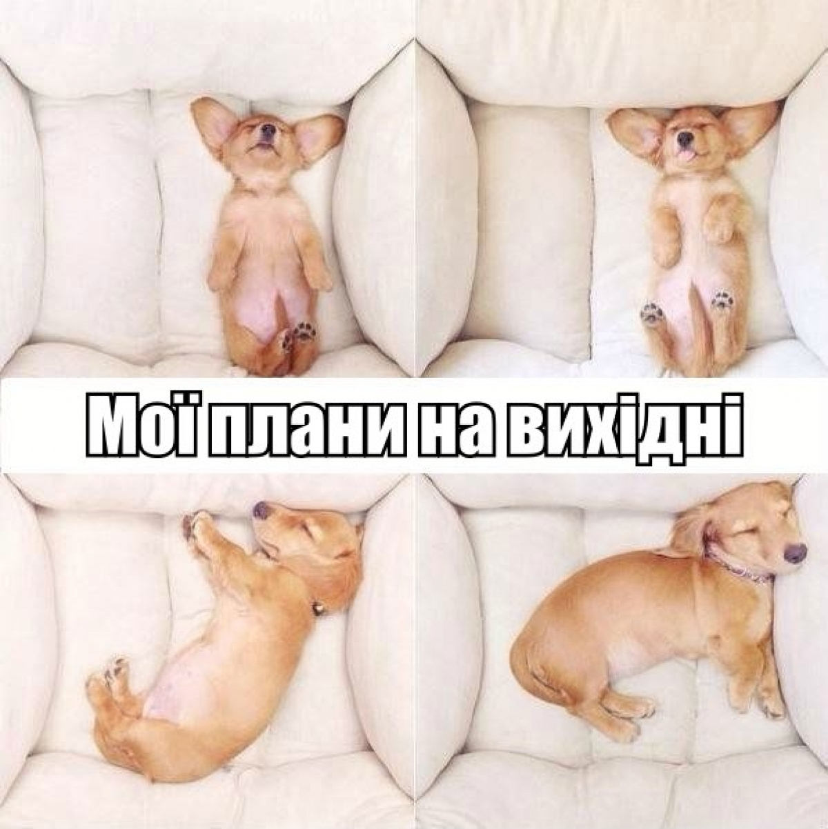ЧЕРВЕНЬ